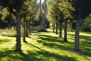 't Struweel 2020 - Kunst in de tuin