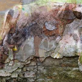 Koe op een oude muur