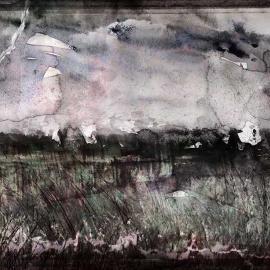 De bosrand, grafische kunstwerk van Wim Noordam